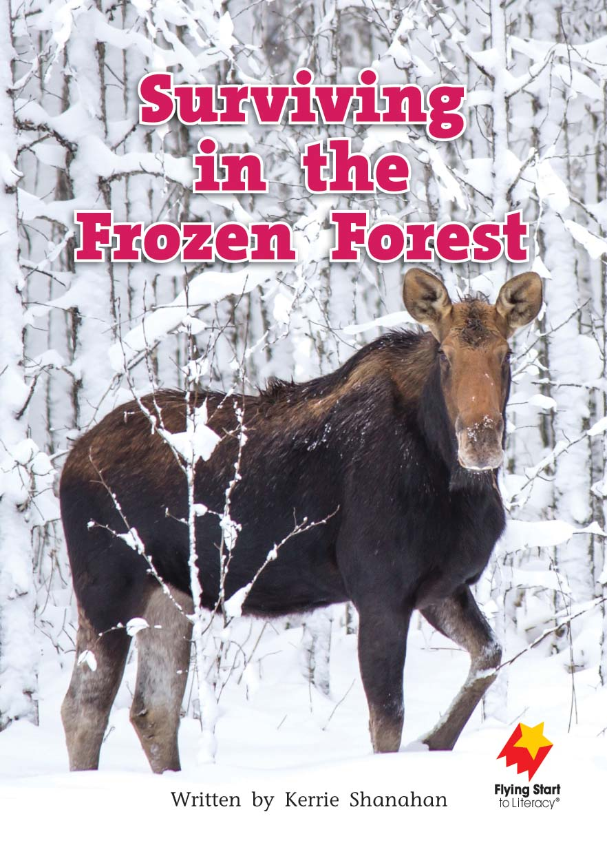 FS Level 17: Surviving in the Frozen Forest