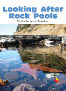 FS Level 20: Looking After Rock Pools