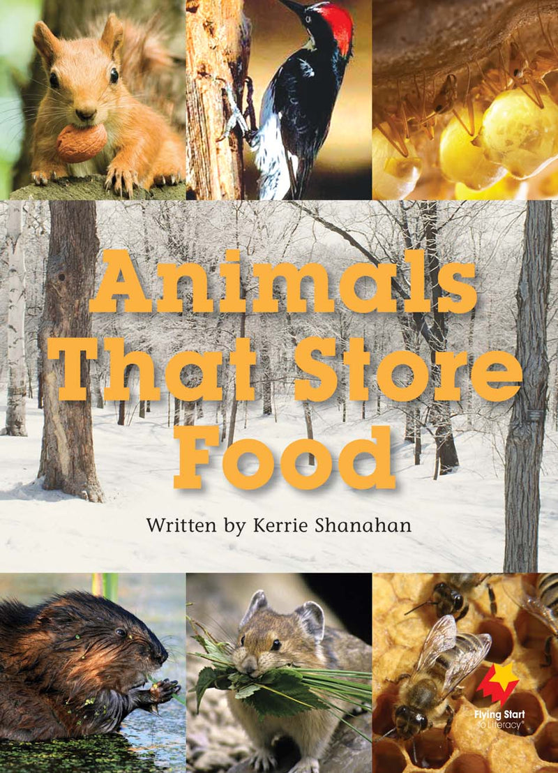 FS Level 21: Animals That Store Food