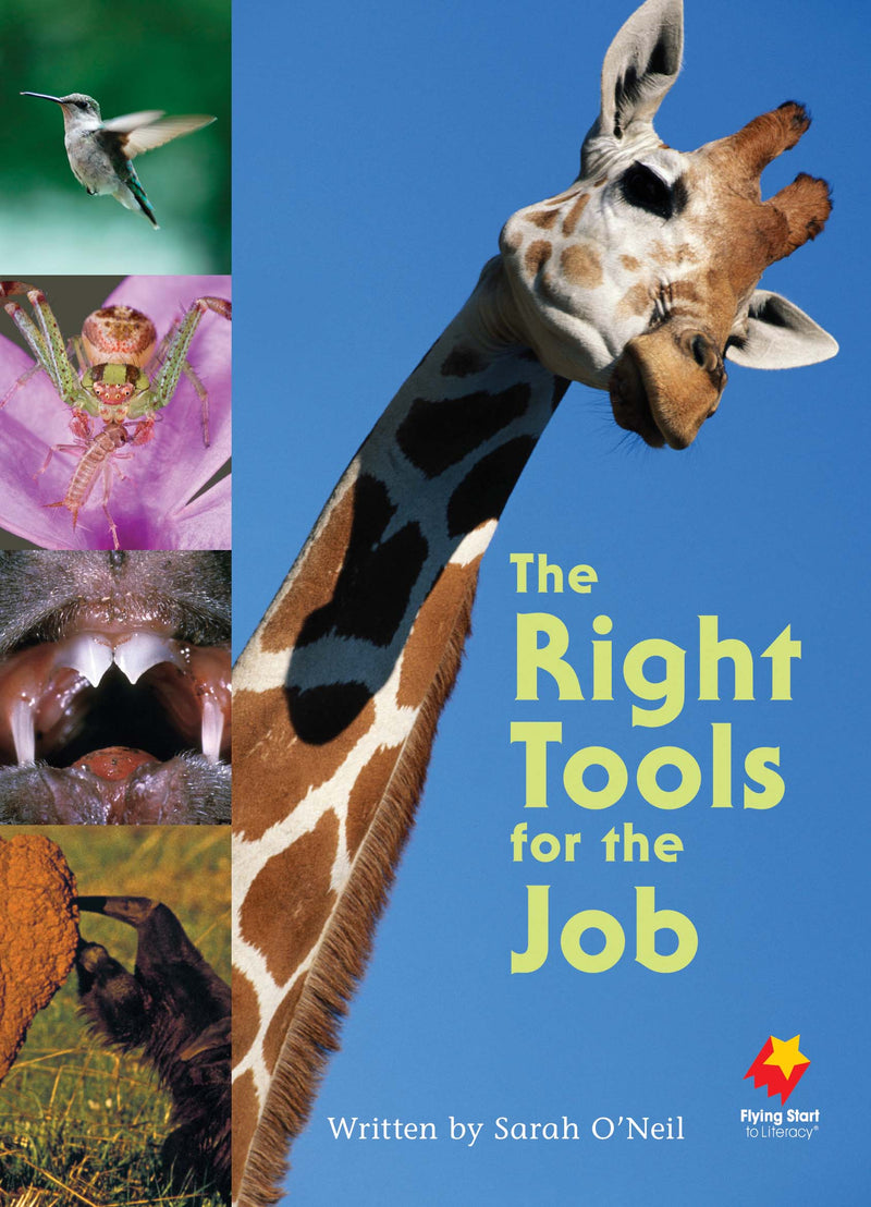 FS Level 22: The Right Tools for the Job