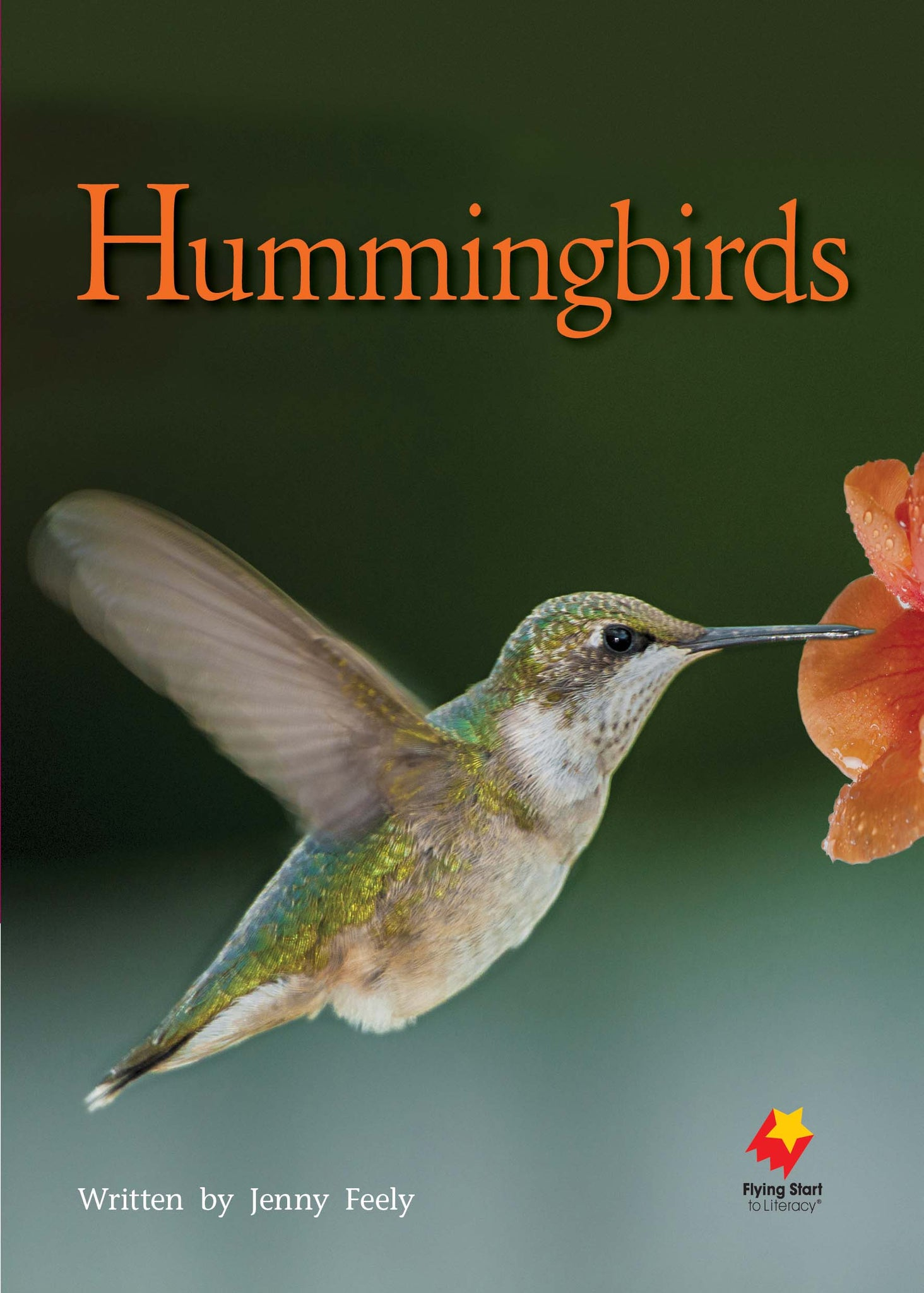 FS Level 23: Hummingbirds