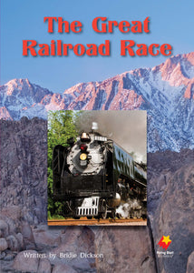 FS Level 24: The Great Railroad Race