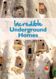 FS Level 29: Incredible Underground Homes