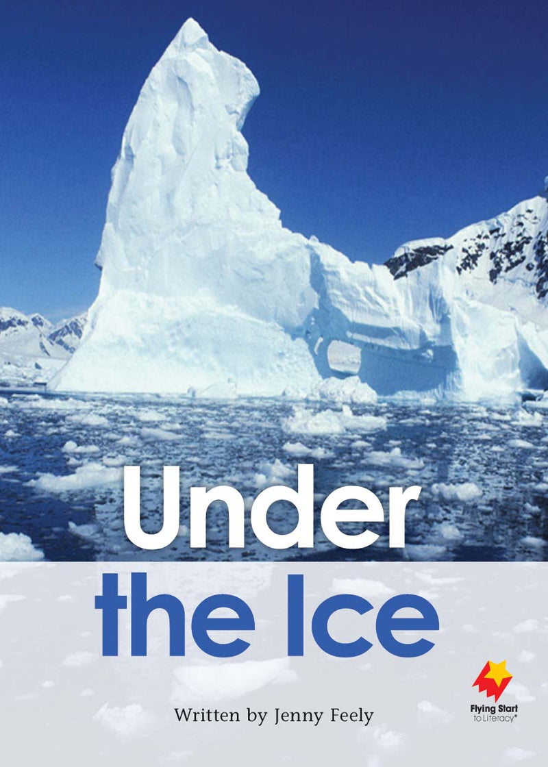 FS Level 30: Under the Ice