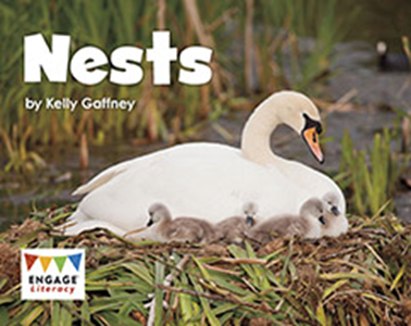 Engage Literacy L2: Nests