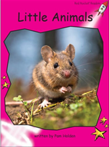 Red Rocket Emergent Non Fiction C (Level 2): Little Animals