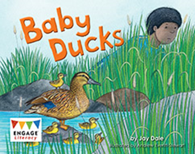 Engage Literacy L4: Baby Ducks