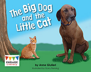 Engage Literacy L4: The Big Dog and the Little Cat