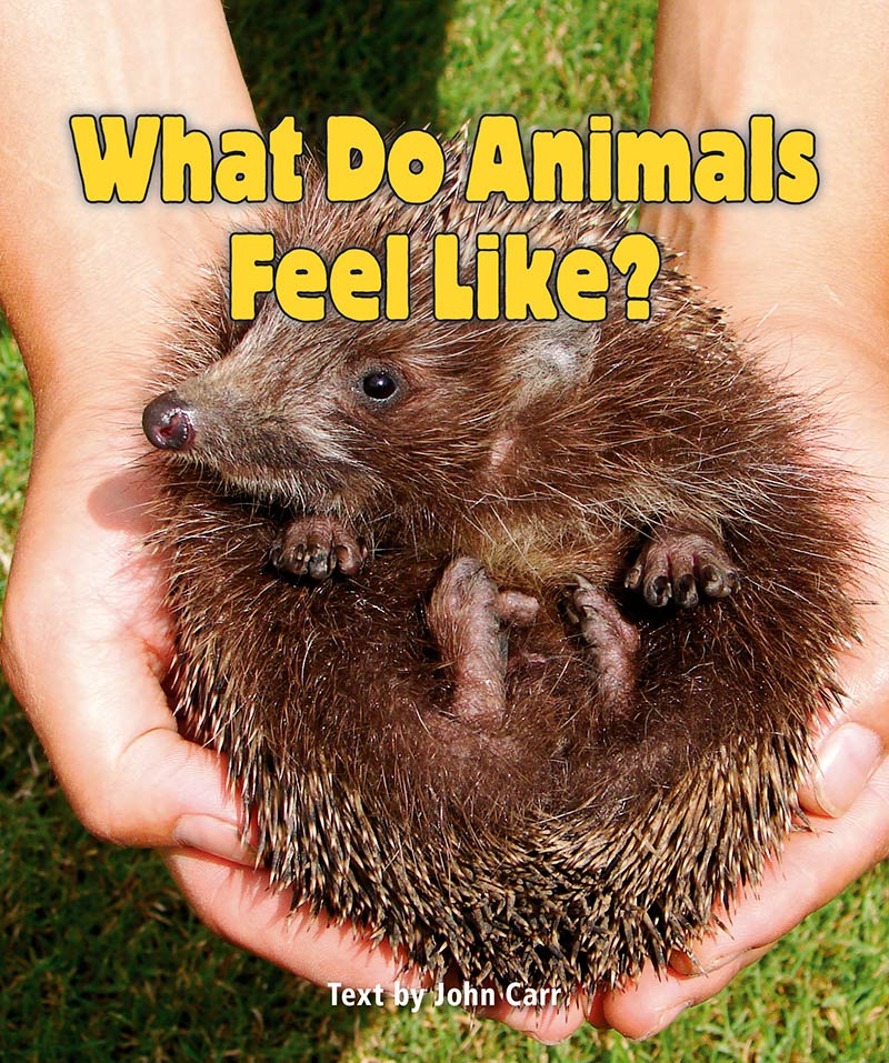 Sunshine Starters Level 4: What Do Animals Feel Like?