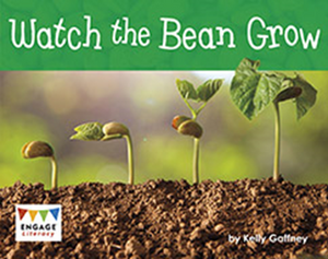 Engage Literacy L7: Watch the Bean Grow