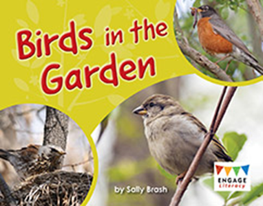 Engage Literacy L9: Birds in the Garden