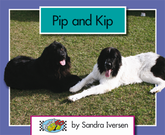 Quick 60 Set 1, Level 1: Pip and Kip