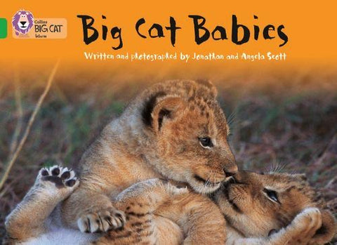 Collins Big Cat Green (Band 5): Big Cat Babies