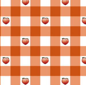 Candice Peach Gingham
