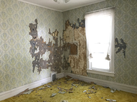 studio room with wallpaper