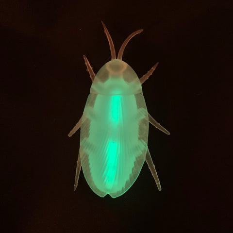 Glow Cockroach with Necklace (Each)