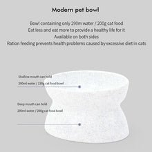 Load image into Gallery viewer, Oblique Angle Design Cat and Dog Bowl with Raised Stand - bcool pets