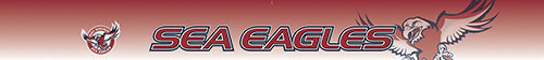 Manly Sea Eagles Blockout Sun Visor Decal