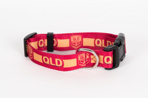 QLD Dog Collar