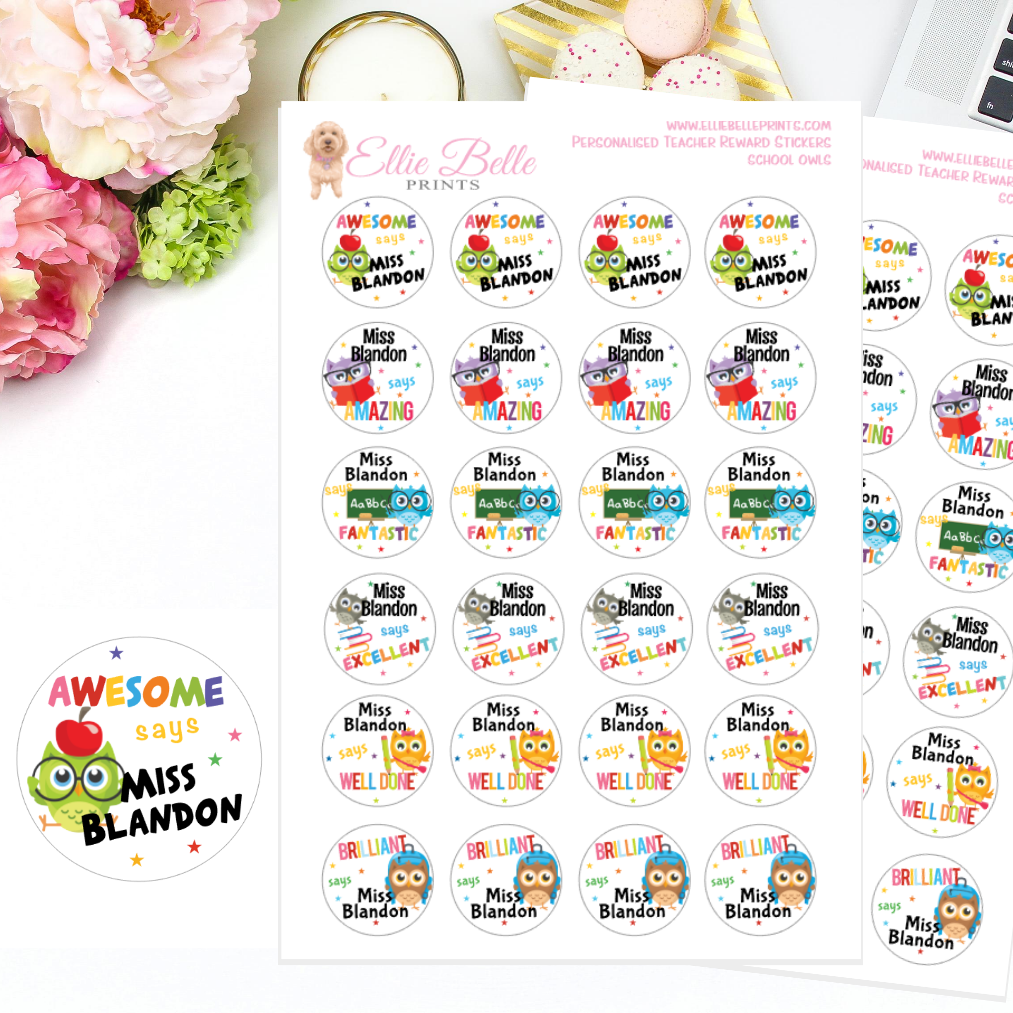 School Owls - Personalised Teacher Reward Stickers
