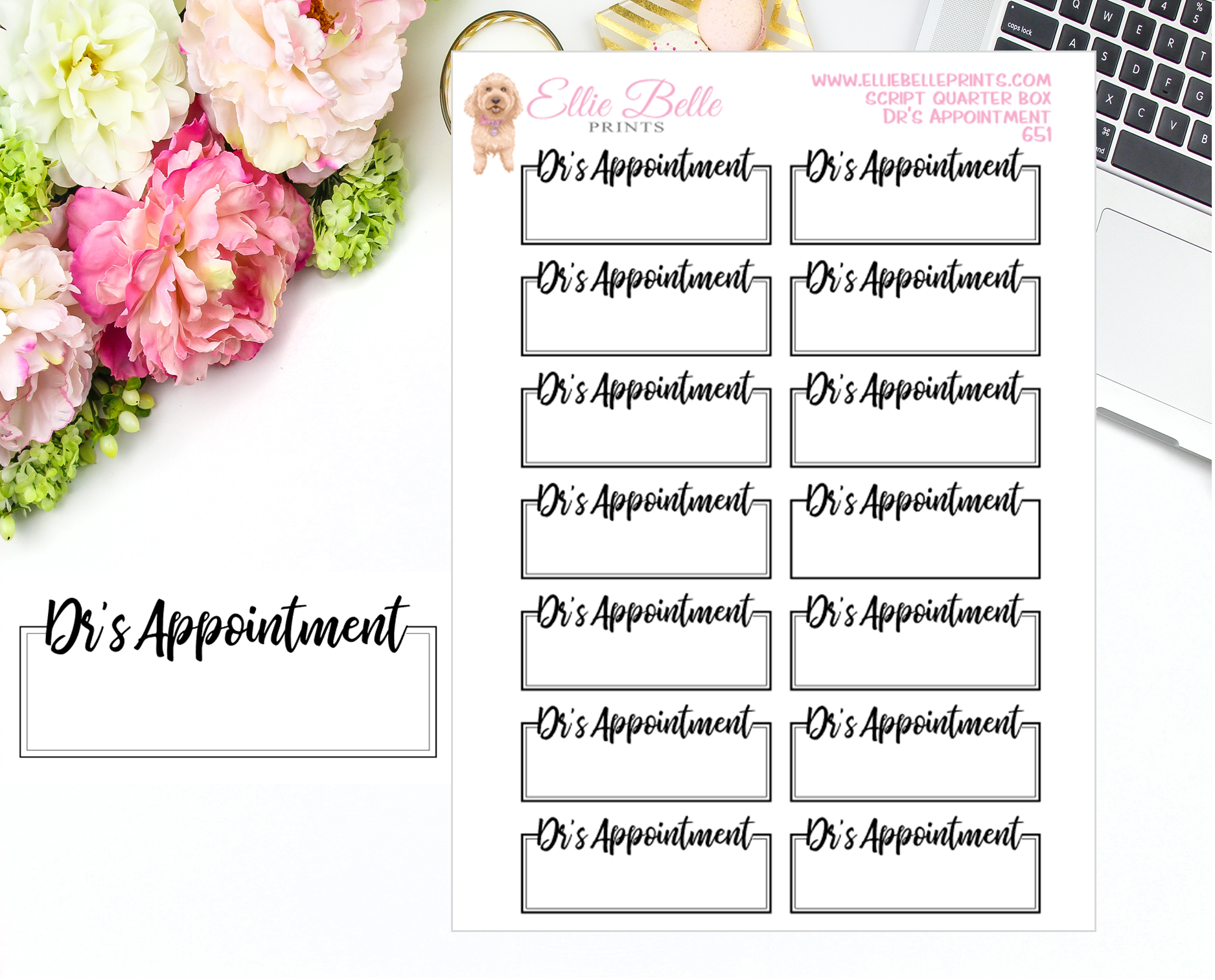 Dr's Appointment Quarter Box with Text - Text Boxes