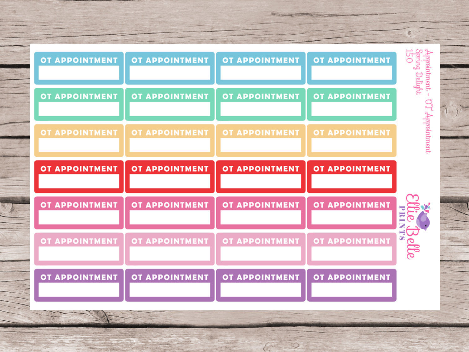 Occupational Therapy Planner Sticker (OT Appointment) - Spring Delight [150]
