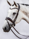 PSOS Bridle Flying Change