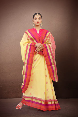 SOUTH COTTON SAREE