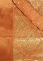 SIGNORAA RUST TISSUE GEORGETTE SAREE-CHG03455 - PRODUCT VIEW