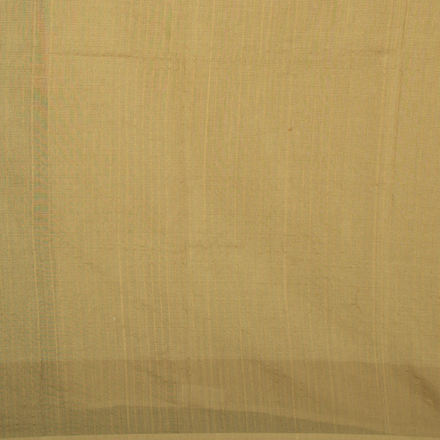 SIGNORAA BEIGE ORGANZA SILK SAREE-PTS04583- Blouse View