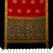 SIGNORAA RED KANCHIPURAM SILK SAREE-KSL02539- Full View