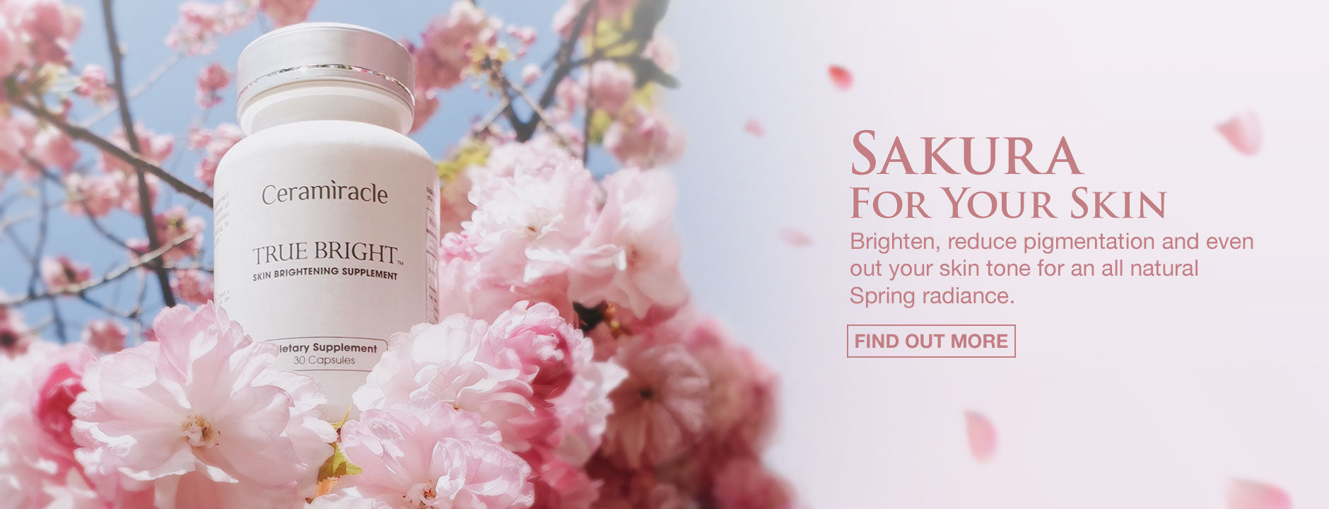 Sakura for your skin