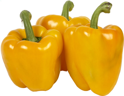 BELL PEPPER Yellow (loose) 50g