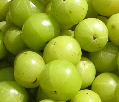 Fresh Indian Gooseberry (Amla), 500g