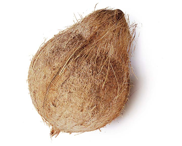 Fresh coconut 1pc