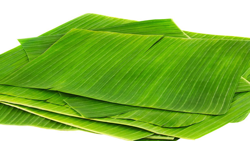 Fresh Green Banana leaves - Long, 500g