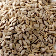 Kernels Sunflower Raw