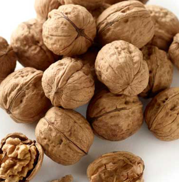 Walnut In Shell Californian 美國加洲合桃肉