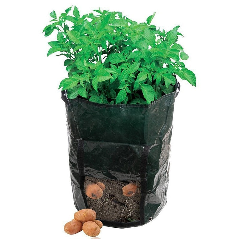 Vegetable Potato Planting Container
