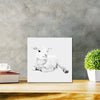 Lamb At Rest Classic - Metal Print 30cm x 30cm
