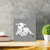 Lamb At Rest (Grey) Classic - Metal Print 30cm x 30cm