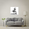 Faithful and True- White Horse Large Format - Metal Print 80cm x 80cm