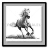 Faithful and True- White Horse Standard - Artist Print with Frame (Print Size:60cm x 60cm; Framed Size 74cm x 74cm)