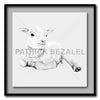 Lamb At Rest Giant Format - Artist Print with Frame (Print Size:100cm x 100cm; Framed Size 114cm x 114cm)