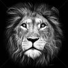 Lion of Judah Large Format - Metal Print 80cm x 80cm