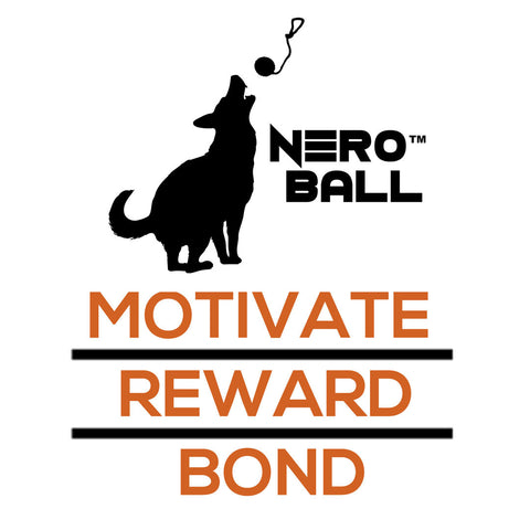 Nero Ball Sticker