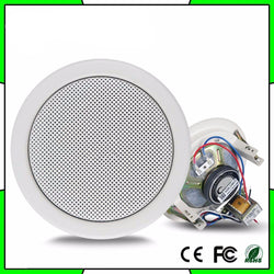 Fresh Deals Consumer Electronics Roof Ceiling Speaker Sound System Amplifier