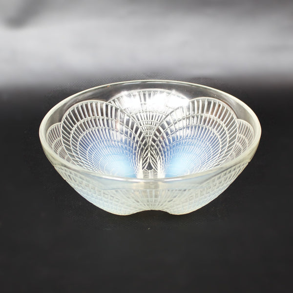 Coquilles Bowl No.3