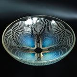 Coquilles Bowl
