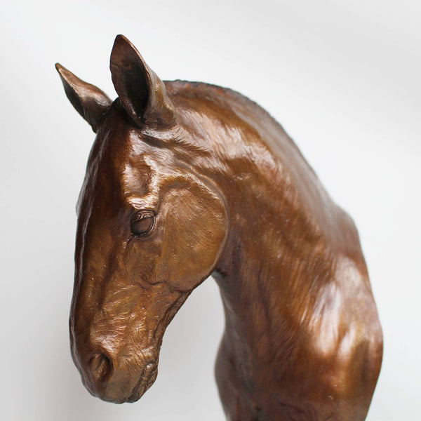 Stephen Winterburn sculpture of a Cobb Horse head at Jeroen Markies